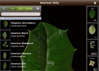 Aplikacja Leafsnap iPhone i iPad - Lifehacker