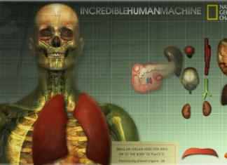 Zdumiewający ludzki organizm - zobacz od środka, jak funkcjonuje Twój organizm - płuca (wybór narządu) - Lifehacker