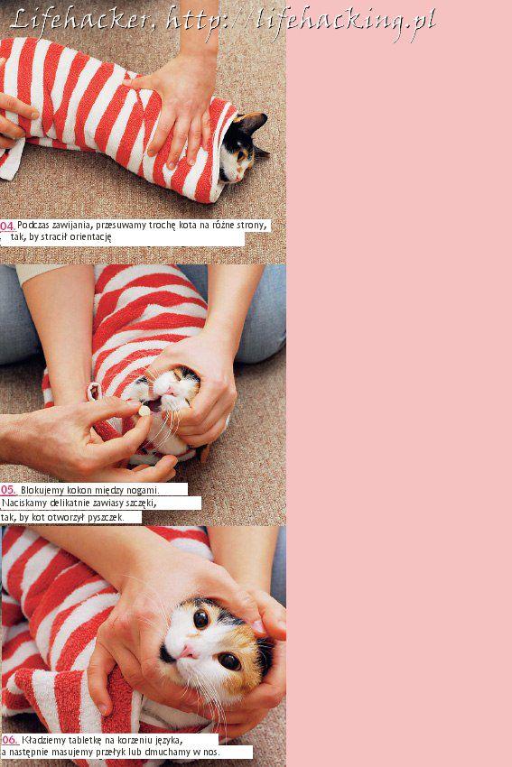 Jak podać kapryśnemu kotu tabletkę - rys. 2