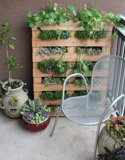 16. Ogródek balkonowy