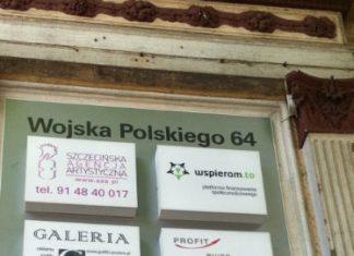 Kamil Rogulski, Marketing & Account Specialist Wspieram.to