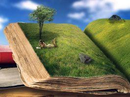Czytaj jedną książkę tygodniowo - Read a book a week Steve Pavlina