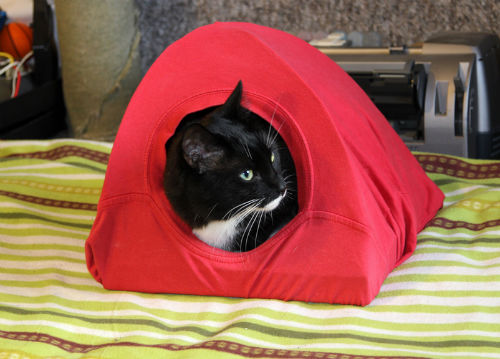 Robimy ze starego T-shirta wygodny domek dla kota 4