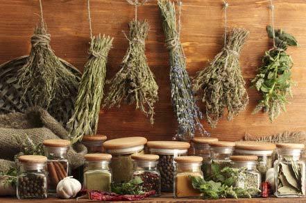 Aby szybko wysuszyć świeżo zebrane zioła, również przyda nam się mikrofala.