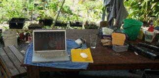 Marzy ci się wolontariat na farmach ekologicznych? Z WWOOF wyjedziesz do dowolnego kraju