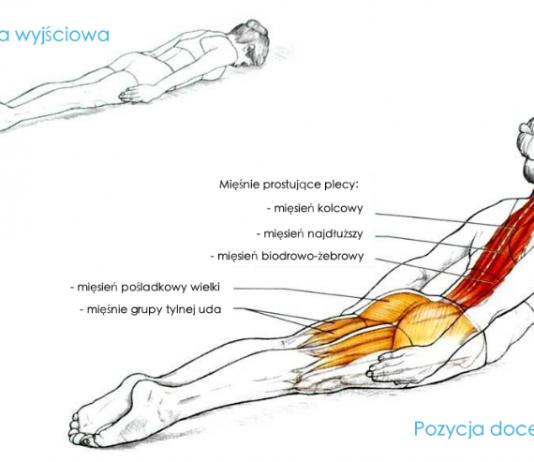 Jedno jedyne ćwiczenie, którego potrzebuje prawidłowa postawa ciała jak przestać się garbić ćwiczenia na prawidłową postawę ćwiczenia na kręgosłup oduczenie się garbienia sposoby na proste plecy