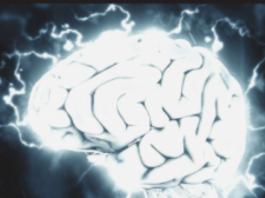 Sprawdzone fakty o mózgu.