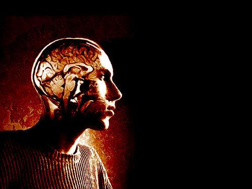 Jak zdać trudny egzamin- Synchronizacja półkul mózgowych i ćwiczenie Alfabet Games