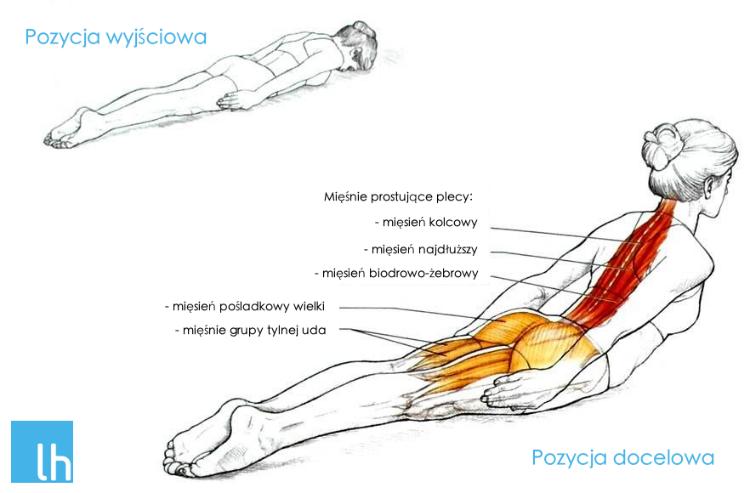 Znalezione obrazy dla zapytania: Prawidłowa podstawa ciała zestaw ćwiczeń