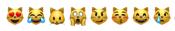 Skąd wziąć lista emoji słownik emotikonki ikonki HTML emotikony z kotami