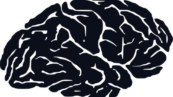 Nasz mózg potrzebuje energii do życia.